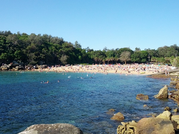 Manly's - Shelley Beach.