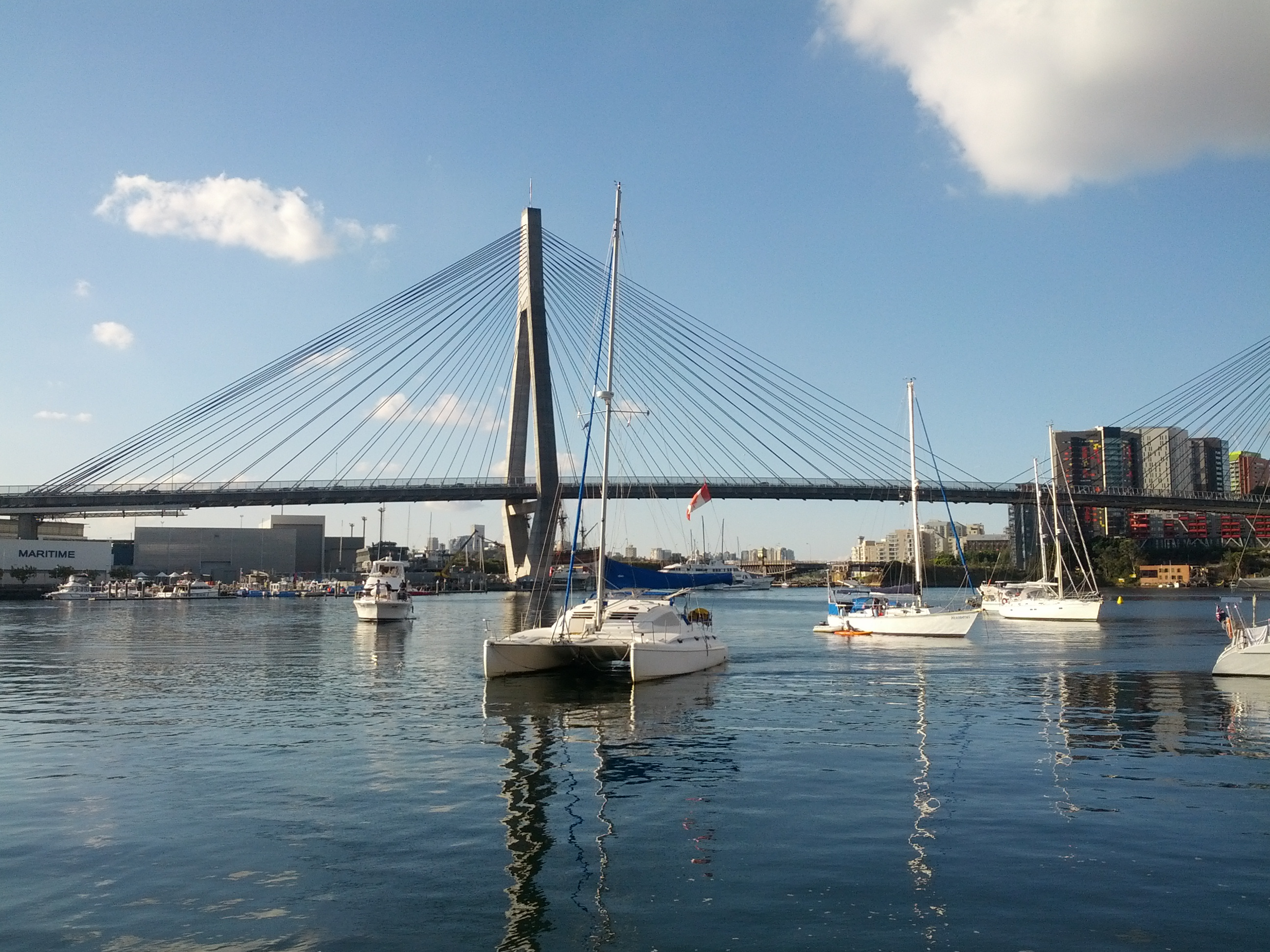 Blackwattle Bay, Sydney Harbour