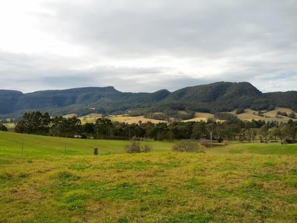 The Dairy @ Cavan - backyard view