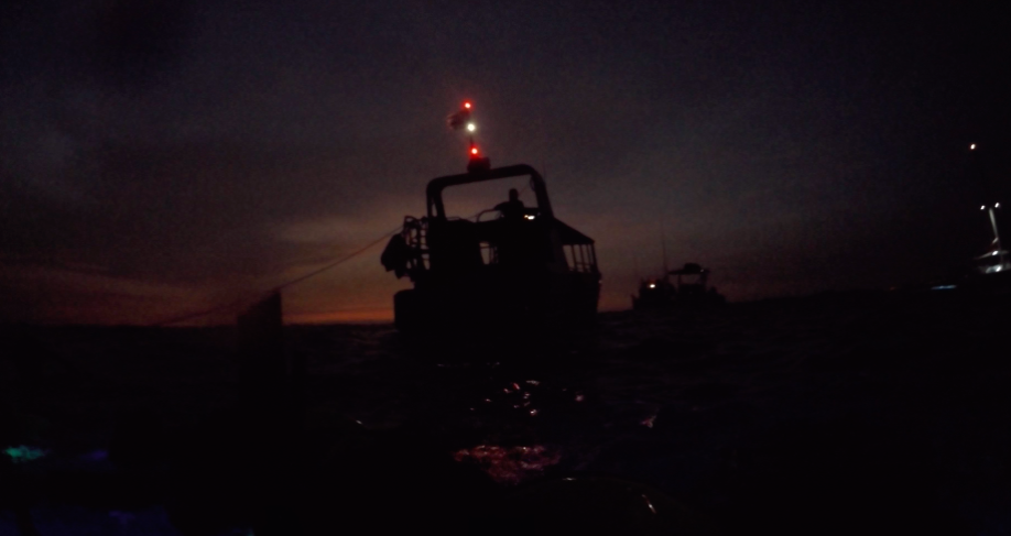 manta-ray-snorkle-kona-14